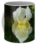 Garden Fairy Of Sunset Coffee Mug