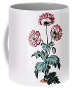 Garden Poppy With Black Seeds Coffee Mug