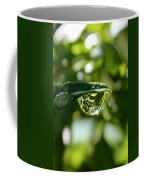 Garden Reflections Coffee Mug
