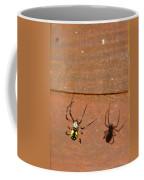 Garden Spider Coffee Mug
