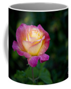 Garden Tea Rose Coffee Mug
