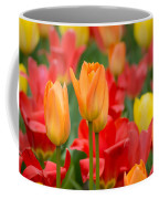 Garden Torches Coffee Mug