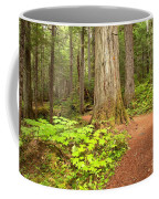 Garibaldi Wilderness Rainforest Coffee Mug