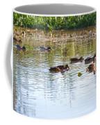 Gathering - Mallars Ducks In Creek Enkopingsaan  Coffee Mug