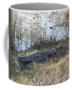Gator Football Coffee Mug by Al Powell Photography USA