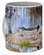 Gator On The Mound Coffee Mug