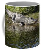 Gator Smile Coffee Mug