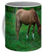 Gazing Horse Coffee Mug