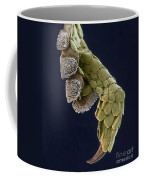 Gecko Foot Sem Coffee Mug