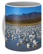 Geese At Bosque Del Apache Coffee Mug by Kurt Van Wagner