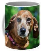 Gem The Miniature Dachshund Coffee Mug