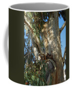 Gentle Calypso Three In Cantoria Village Spain  Coffee Mug