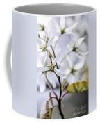 Gentle White Spring Flowers Coffee Mug