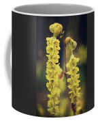 Gently Falling Coffee Mug by Laurie Search