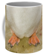 Gentoo Penguin Feet Coffee Mug