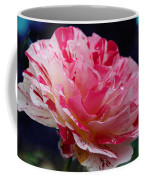 George Burns Floribunda Rose Coffee Mug