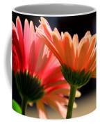Gerber Daisies Coffee Mug