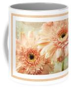 Gerber Daisy 2 Coffee Mug