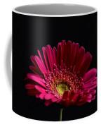 Gerbera Daisy 2 Coffee Mug