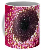 Gerbera Daisy Macro Coffee Mug