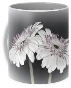 Gerbera Dream 2 Coffee Mug
