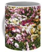 Gerbera Flowers Coffee Mug