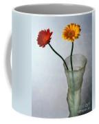 Gerbera Jamesonii Coffee Mug