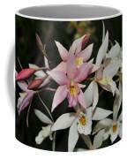 Gerberara Snow Ballet 2 Of 2 Coffee Mug