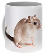 Gerbil Gerbillinae Coffee Mug