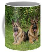 German Shepherds - Mother And Son Coffee Mug