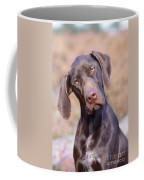 German Short-haired Pointer Puppy Coffee Mug