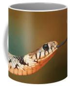 Get Over Here Coffee Mug