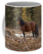 Ghost Forest Stallion Coffee Mug
