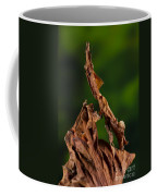 Ghost Or Dead Leaf Mantis Coffee Mug