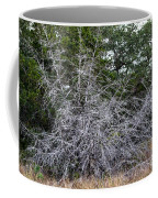 Ghost Trees 1 Coffee Mug