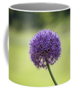 Giant Allium Flower Coffee Mug