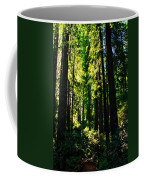 Giant Redwood Forest Coffee Mug