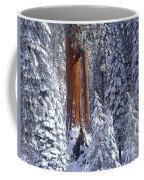 Giant Sequoia Trees Sequoiadendron Coffee Mug