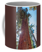 Giant Sequoias Coffee Mug
