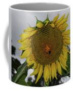 Giant Sunflower Coffee Mug