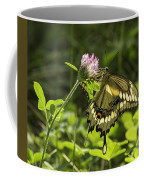 Giant Swallowtail On Clover 3 Coffee Mug