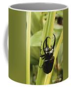 Giant Three-horned Beetle Coffee Mug