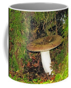 Giant Toad Stool Coffee Mug