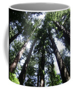 Giants Of The Forest Coffee Mug