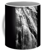 Gibbon Falls Coffee Mug