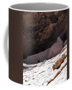 Gila Cliff Slope Coffee Mug