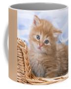 Ginger Kitten In Basket Coffee Mug