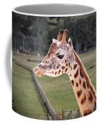 Giraffe 02 Coffee Mug by Paul Gulliver