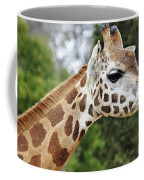 Giraffe Beauty Coffee Mug