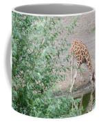 Giraffe Drinking Coffee Mug